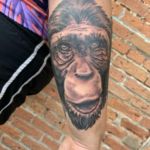 Chimp tattoo