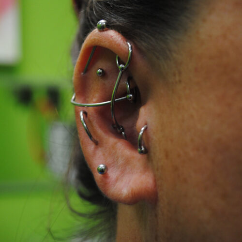 Ear Piecring project by Brandon Bohlman at Cactus Tattoo in Mankato