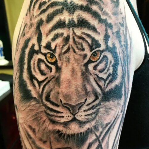 tiger arm tattoo by Makeba Ische at Cactus Tattoo in Mankato